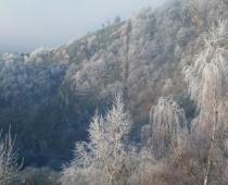 L'hiver / Winter / el Invierno