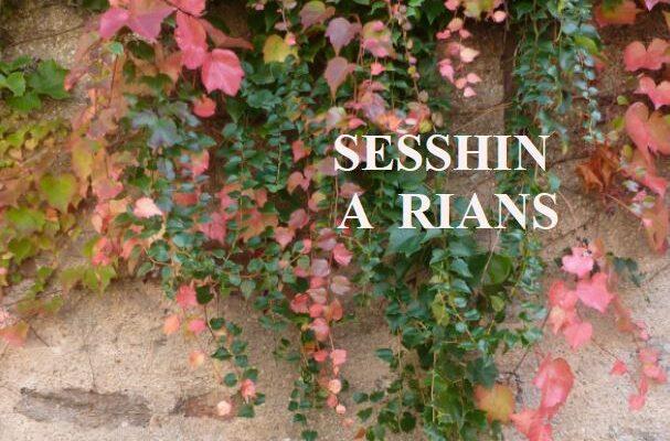 20-22 Nov – Sesshin a RIANS